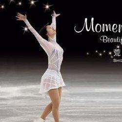 荒川静香 Moment ~Beautiful skating~ [DVD]